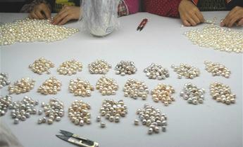 Aside pearl farming 4 meitu 2