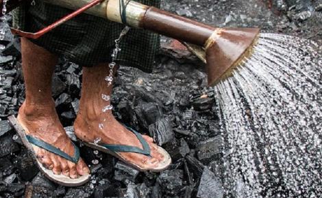 Sidebar mongabay charcoal 1