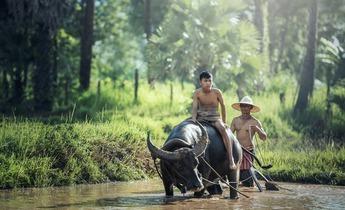 Aside myanmar