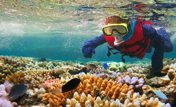 Index thinkstockphotos 610660400 child snorkeling in great barrier reef queensland australia chameleonseye 1440x838