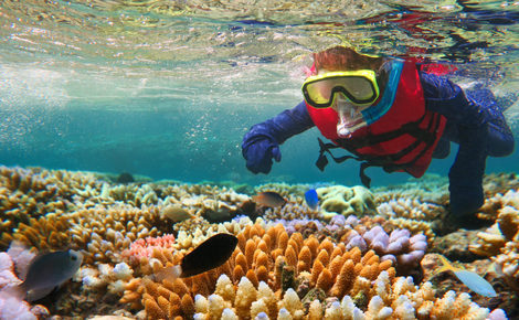 Sidebar thinkstockphotos 610660400 child snorkeling in great barrier reef queensland australia chameleonseye 1440x838