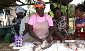 Index ida odhiambo in pink gutting the nile perch ready to extract the maw. e1546858938603 1440x781