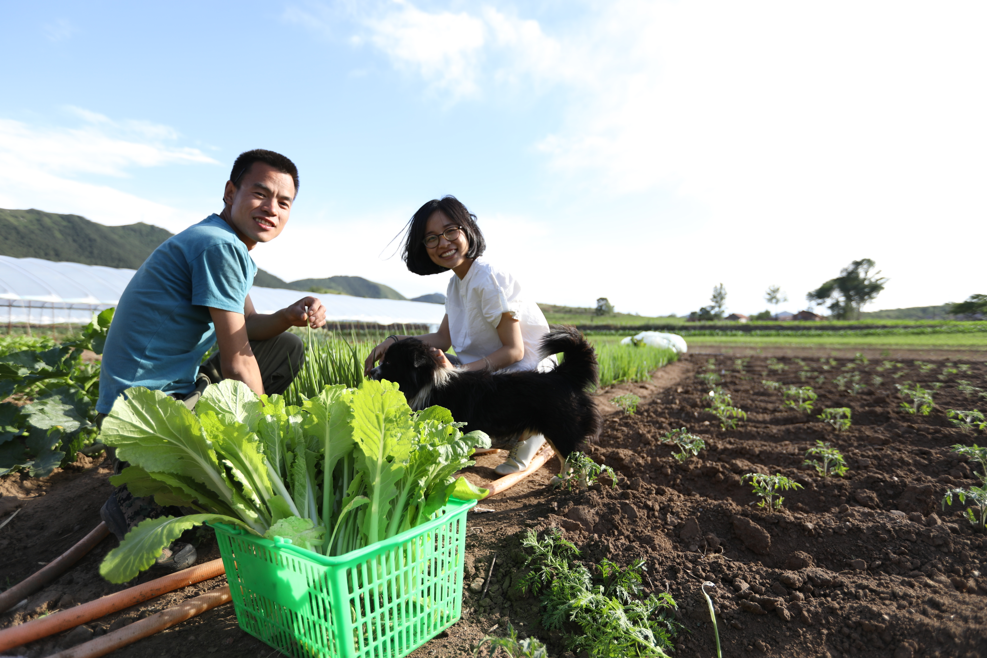How e-commerce is reshaping organic farming