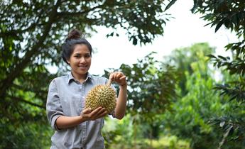 Aside durian bri 1 meitu 1