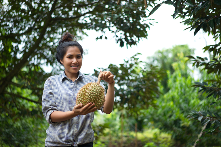 Image result for thai agriculture