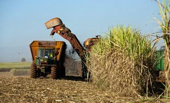 Aside chinese demand heats up brazils ethanol industry