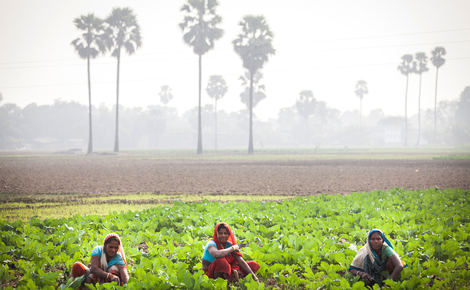 Sidebar gp0sto8zb local female farmers in india