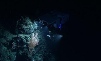 Index deep sea mining isa 1440x810