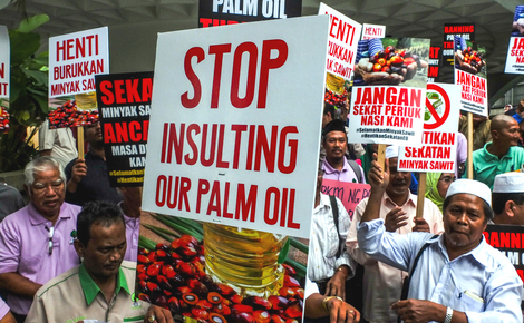 Sidebar boycott palm oil not the answer