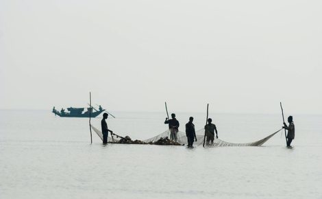 Sidebar jailing fishers won t save bay of bengal fish 1440x964