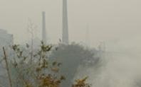 Index pollution
