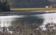 Aside wetland 2