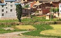 Index rural china