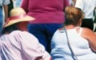 Index obesityhomepage