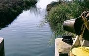 Aside irrigation egypt1 large