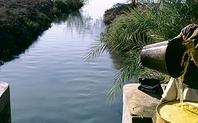 Index irrigation egypt1 large