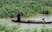 Aside marsh arabs in a mashoof large