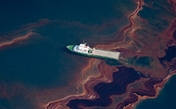 Index gulf of mexico oil spill 1205 large