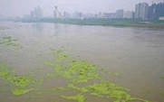 Aside phosphorous pollution 2