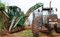 Index sugarcane426x180  1