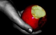 Index 426 apple