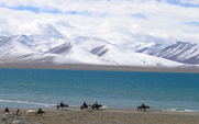 Aside 426 tibet resource