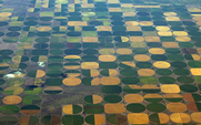 Aside crop circles 42622222