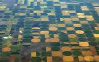 Index crop circles 42622222