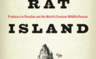 Index rat island image