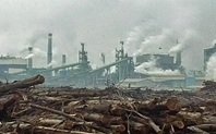Index industry pollution 426