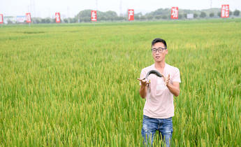 Index wj8khg eco farming in china
