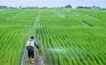 Aside p8wdx7 china fertiliser and pesticide use