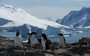 Aside antarctica