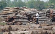 Aside logs