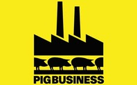 Index pigbusiness