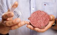 Index cultured beef 02 600