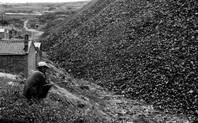Index datong coalmine 1