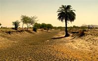 Index main drought india 430 2 meitu 2