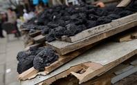 Index coal market