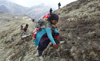 Aside g2warh searching for caterpillar in nepal