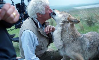 Aside hcnybb wolf totem animal welfare