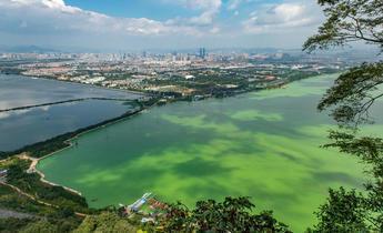 Aside kddn01 dianchi lake pollution