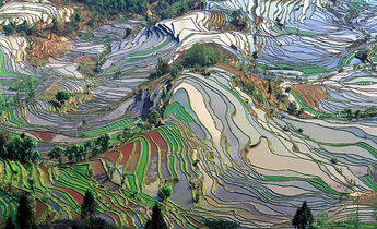 Index 1024px terrace field yunnan china denoised