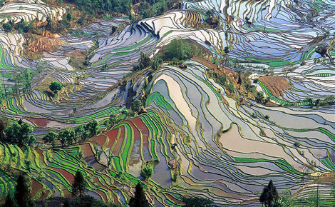 Sidebar 1024px terrace field yunnan china denoised