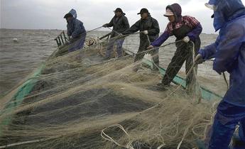 Aside yangtze river fishing meitu 1