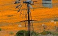 Index africa windmill