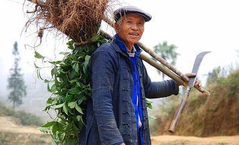Index 1024px yuanyang hani farmer