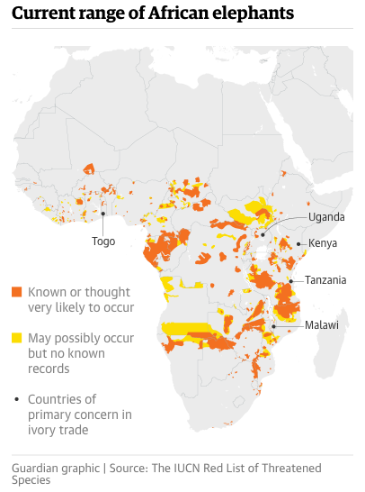 map of current range of African elephants