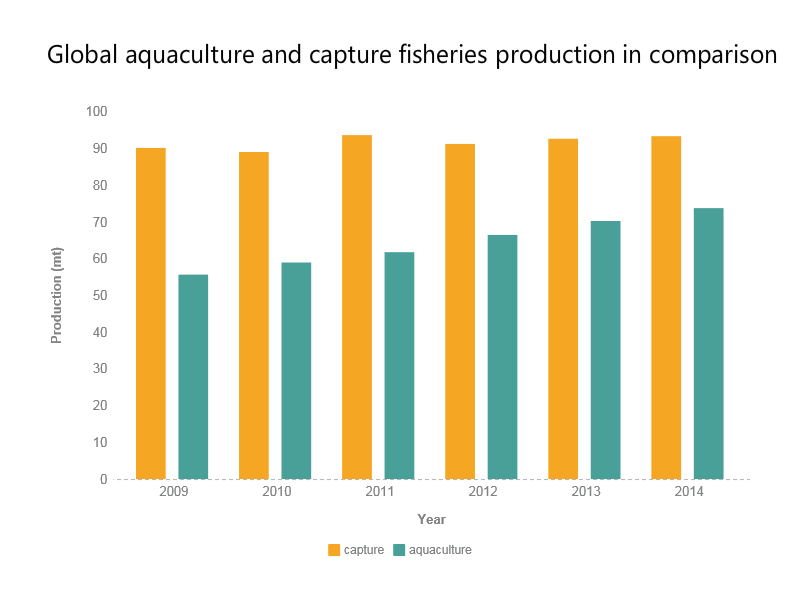 Global aquaculture and capture fisheries production in comparison