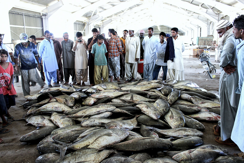 Fishermen are concerned about being displaced from Gwadar